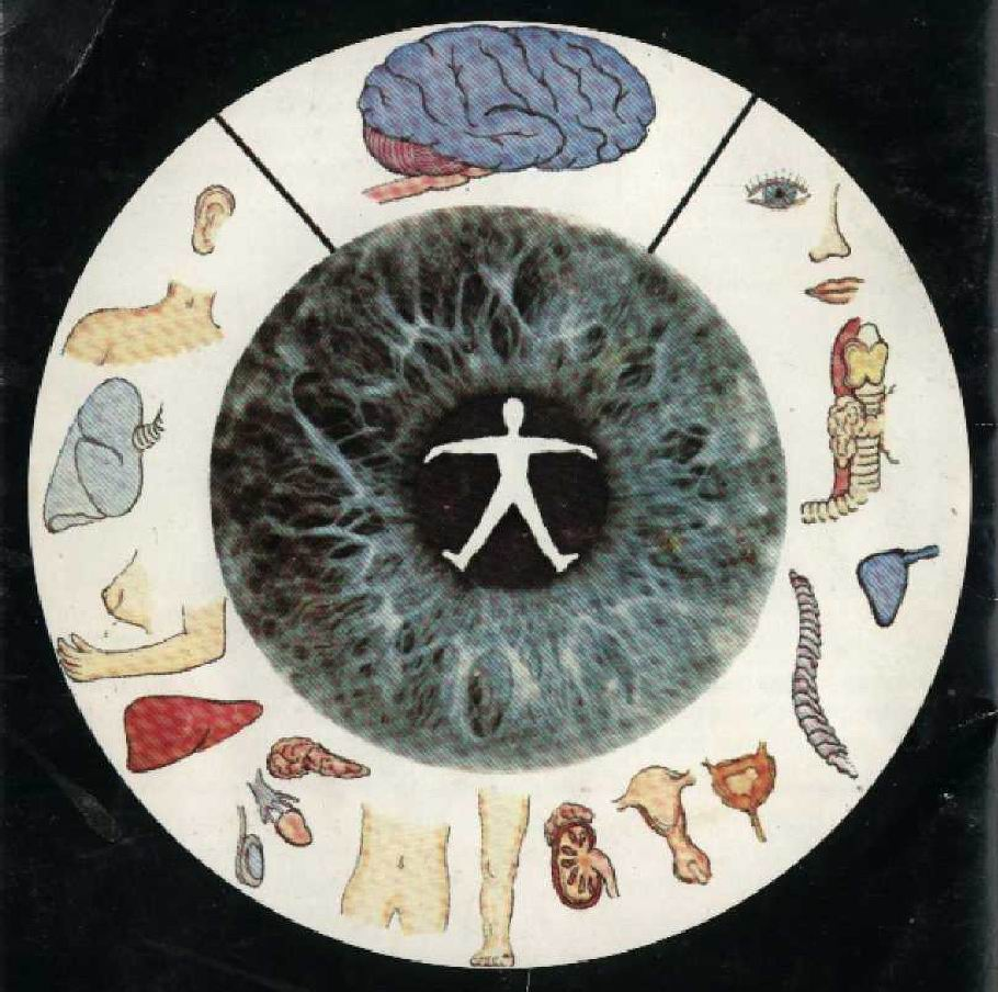 How Does An Iridology Eye Chart Work?